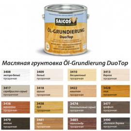 SAICOS Ol-Grundierung DuoTop (Германия)